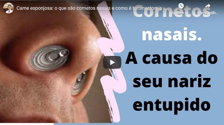 o que são os cornetos nasais a carne esponjosa