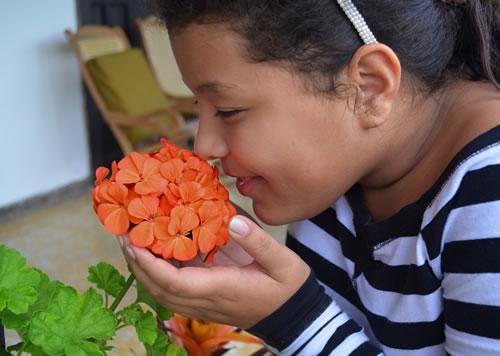 tratamento da anosmia em curitiba hiposmia sentir cheiro especialista
